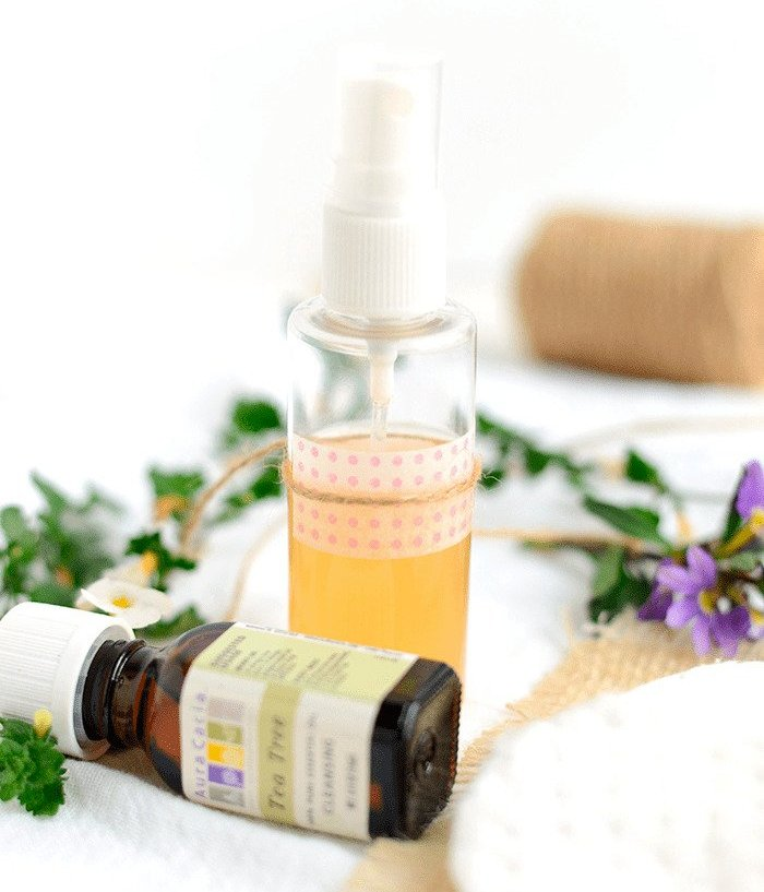 Tea Tree Oil, apple cider vinegar Toner DIY